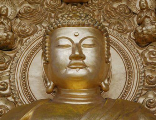 Mindfulness : les thérapies basées sur la pleine conscience