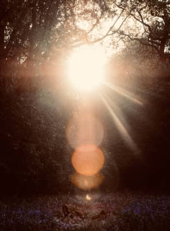 soigner éclairage séance sophrologie